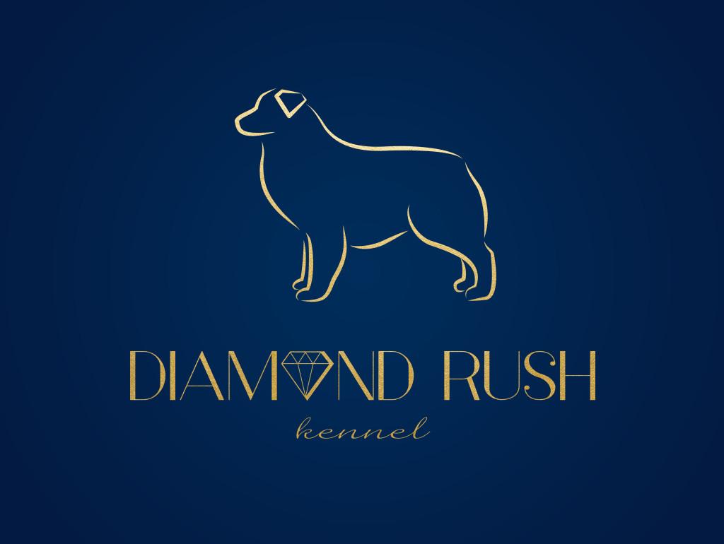 diamond_rush_logo_3a